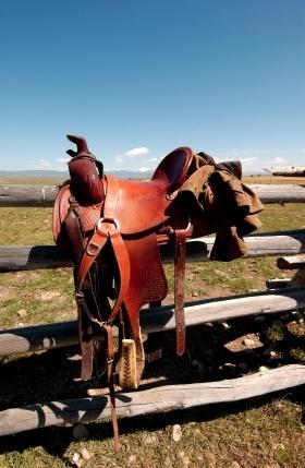 General / Concept / Saddle