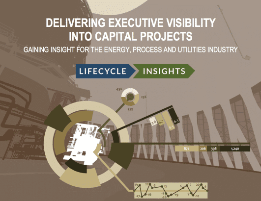 Cover / Delivering Executive Insights on Capital Projects